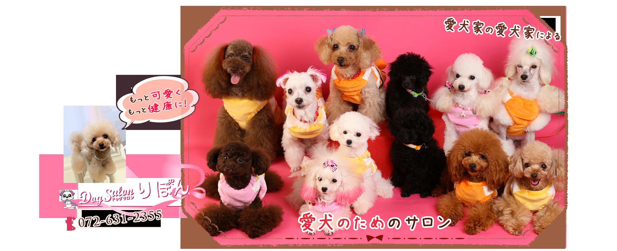 愛犬家の愛犬家による愛犬のためのサロン